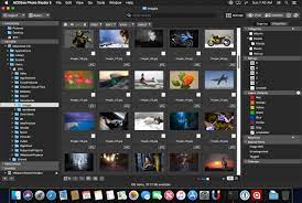 ACDSee Photo Studio 7 for Mac Free Download