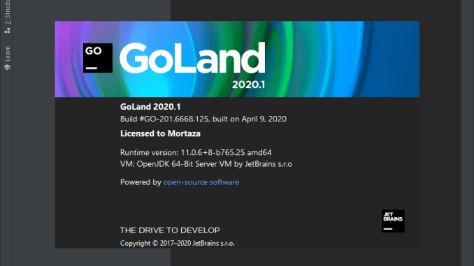 JetBrains GoLand 2021 for Mac Free Download