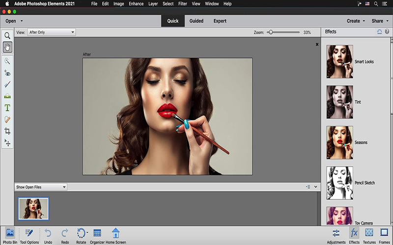 Adobe Photoshop Elements 2021 for Mac Direct Download Link