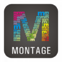Download WidsMob Montage for Mac