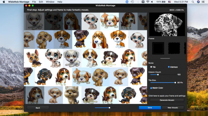 WidsMob Montage for Mac Full Version Download